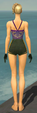 Mesmer Sunspear Armor F gray arms legs back