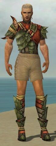 File:Ranger Elite Drakescale Armor M gray chest feet front.jpg