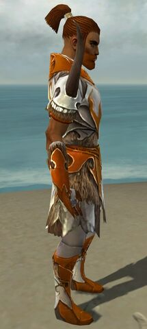 File:Paragon Norn Armor M dyed side.jpg