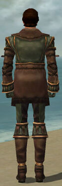 Mesmer Ancient Armor M gray back