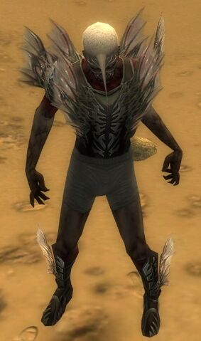 File:Necromancer Primeval Armor M gray chest feet front.jpg