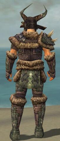 File:Warrior Charr Hide Armor M gray back.jpg