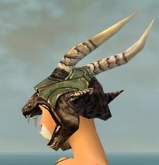 File:Warrior Elite Charr Hide Armor F gray head side.jpg