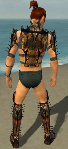 File:Assassin Elite Exotic Armor M gray chest feet back.jpg