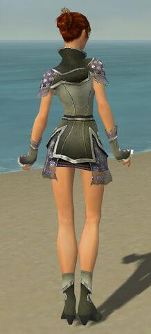 File:Elementalist Shing Jea Armor F gray back.jpg
