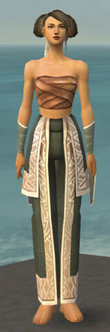 File:Monk Tyrian Armor F gray arms legs front.jpg