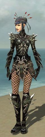 File:Necromancer Luxon Armor F gray front.jpg