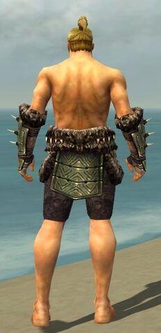 File:Warrior Elite Charr Hide Armor M gray arms legs back.jpg