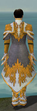 Elementalist Iceforged Armor M dyed back