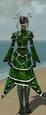 Necromancer Fanatic Armor F dyed back