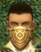 File:Ranger Elite Kurzick Armor M gray head front.jpg