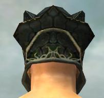 File:Warrior Elite Luxon Armor M gray head back.jpg