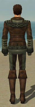 Mesmer Istani Armor M gray back