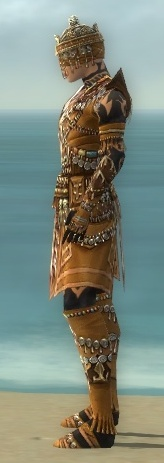 File:Ritualist Elite Imperial Armor M dyed side.jpg