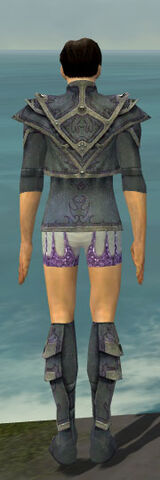 File:Elementalist Krytan Armor M gray chest feet back.jpg
