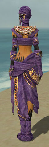 File:Ritualist Ancient Armor F dyed back.jpg