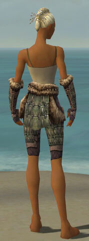 File:Warrior Charr Hide Armor F gray arms legs back.jpg