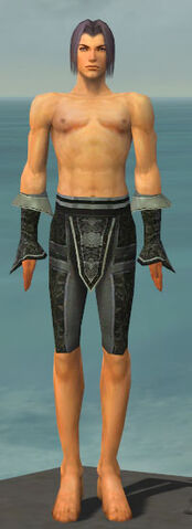 File:Elementalist Elite Canthan Armor M gray arms legs front.jpg