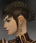 File:Monk Elite Canthan Armor F gray earrings.jpg
