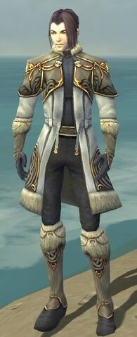 File:Elementalist Norn Armor M gray front.jpg