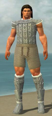 File:Warrior Ascalon Armor M gray chest feet front.jpg
