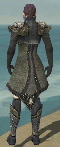 File:Elementalist Elite Stoneforged Armor M gray chest feet back.jpg