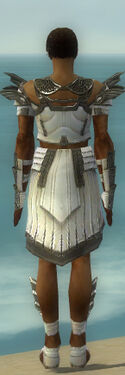 Paragon Ancient Armor M gray back
