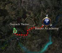 Ruprecht Brauer map