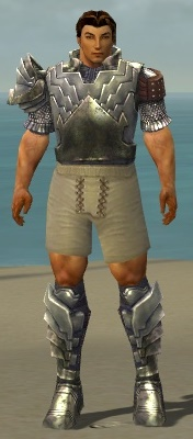 File:Warrior Templar Armor M gray chest feet front.jpg