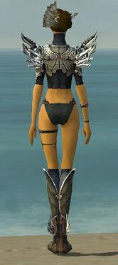 Assassin Asuran Armor F gray chest feet back