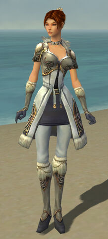 File:Elementalist Norn Armor F gray front.jpg