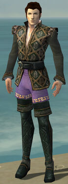 Mesmer Elite Noble Armor M gray chest feet front