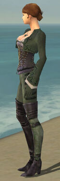 Mesmer Rogue Armor F gray side