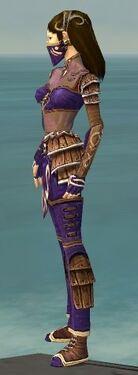 Ranger Shing Jea Armor F dyed side