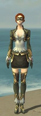 Mesmer Monument Armor F gray front