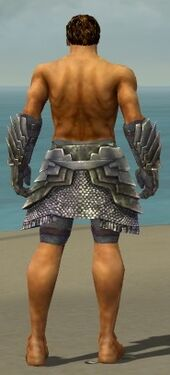 Warrior Templar Armor M gray arms legs back