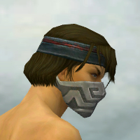 File:Assassin Elite Canthan Armor M gray head side.jpg