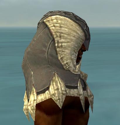 File:Dervish Norn Armor M gray head side.jpg
