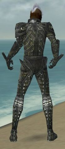 File:Necromancer Necrotic Armor M gray back.jpg