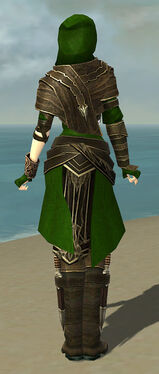 Shining Blade Uniform F default back