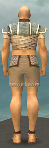 File:Monk Woven Armor M gray chest feet back.jpg