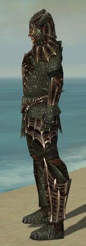 File:Warrior Elite Dragon Armor M gray side.jpg