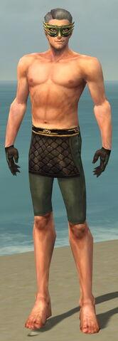 File:Mesmer Vabbian Armor M gray arms legs front.jpg