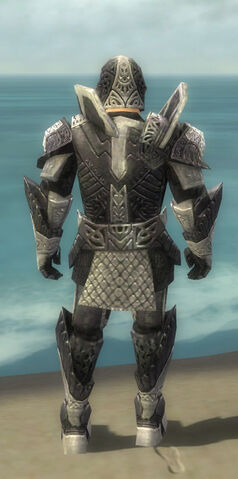 File:Warrior Elite Platemail Armor M dyed back.jpg
