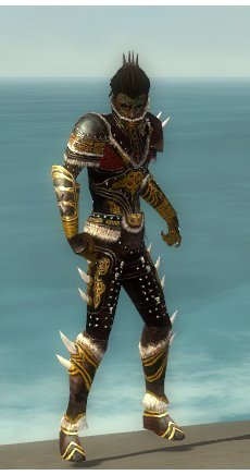 File:Necromancer Norn Armor M dyed front.jpg