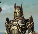 Warrior Kurzick armor/Male