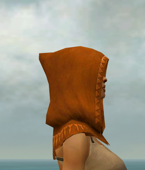 File:Dervish Sunspear Armor F dyed head side.jpg