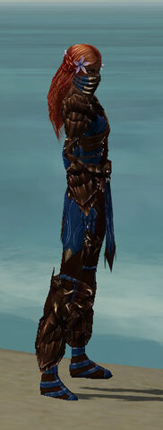 File:Ranger Primeval Armor F dyed side.jpg