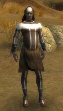 Wandering Priest