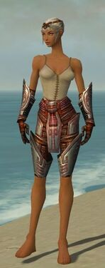 Warrior Asuran Armor F gray arms legs front